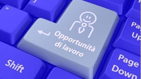 work experience all'estero